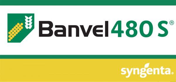 Banvel® 480 SL